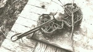 old violin- web